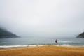 winter_fog_beach